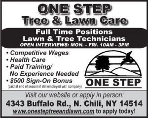 one-step-tree-2x2-employment-ft-2-2017