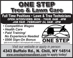 One  Step Tree 2x2 Employment-FT 2016