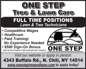one-step-tree-2x2-employment-ft-2017