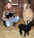 Claudia Drechsel, a ninth-grader at Holley Middle School/High School, with her Navajo-Churro sheep Netty and lambs, Elsa and Anna.
