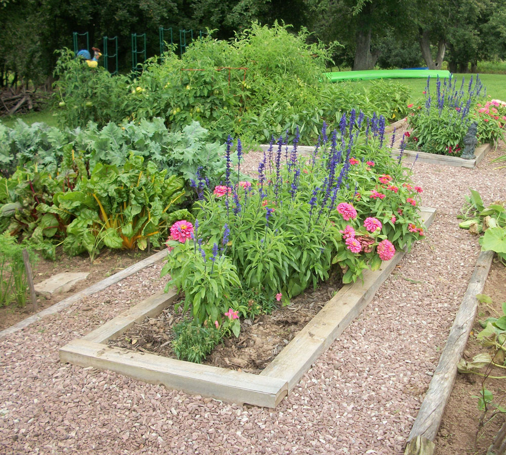 Garden tour former gravel quarry site and lots of compost for Formal vegetable garden design