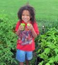 X'Kari Hare volunteers at St. George's Community Garden harvesting vegetables.