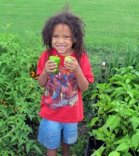 X'Kari Hare volunteers at St. George's Community Garden harvesting vegetables.