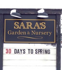 Sara's spring sign