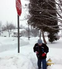 hydrant shovel