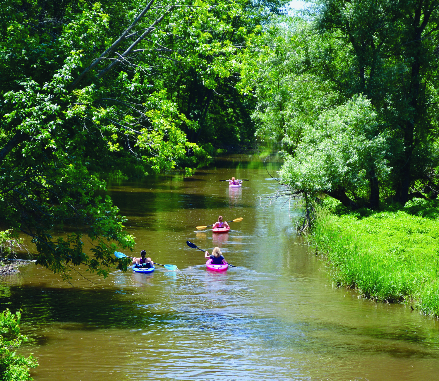 Black Creek paddlers