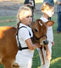 Hope Avedision, holding the calf, was first prize winner at the 2013 Fall Calf Jersey breed competition. Photograph by Walter Horylev