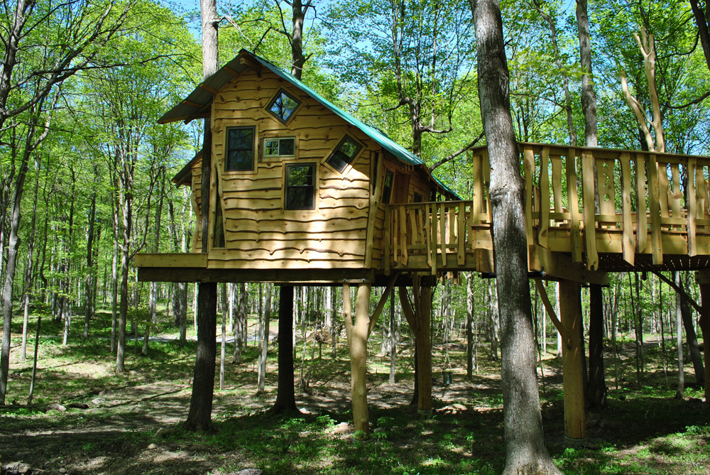 """My Treehouse"" is the first fully accessible, wooden treehouse for children with paralysis and other physical challenges in the Finger Lakes Region. It features wheelchair-accessible ramps, wide platforms, and sensory equipment for enhanced learning. It gradually rises to 22 feet above ground."