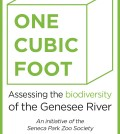 One_Cubic_Foot_for_Web_2