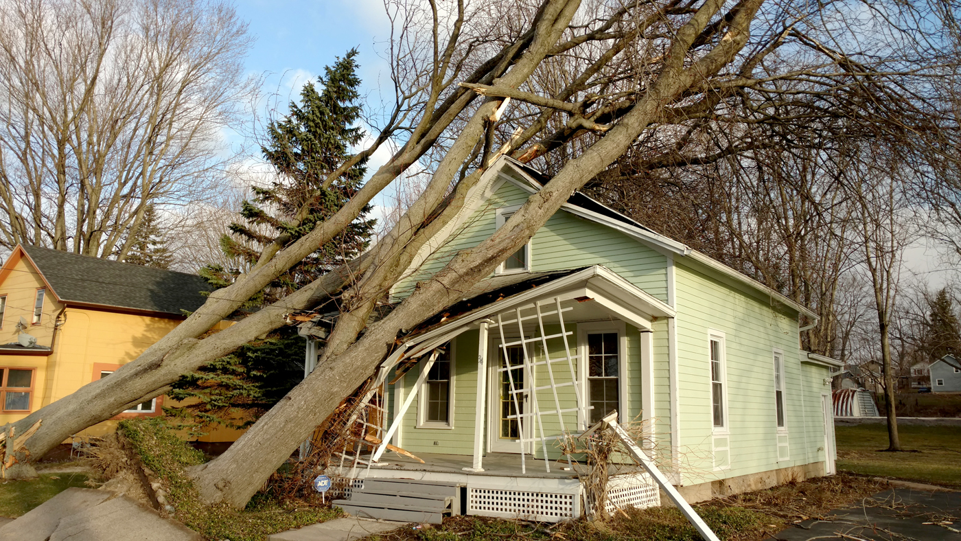 A fallen tree on a house on Howard Avenue. Provided photo