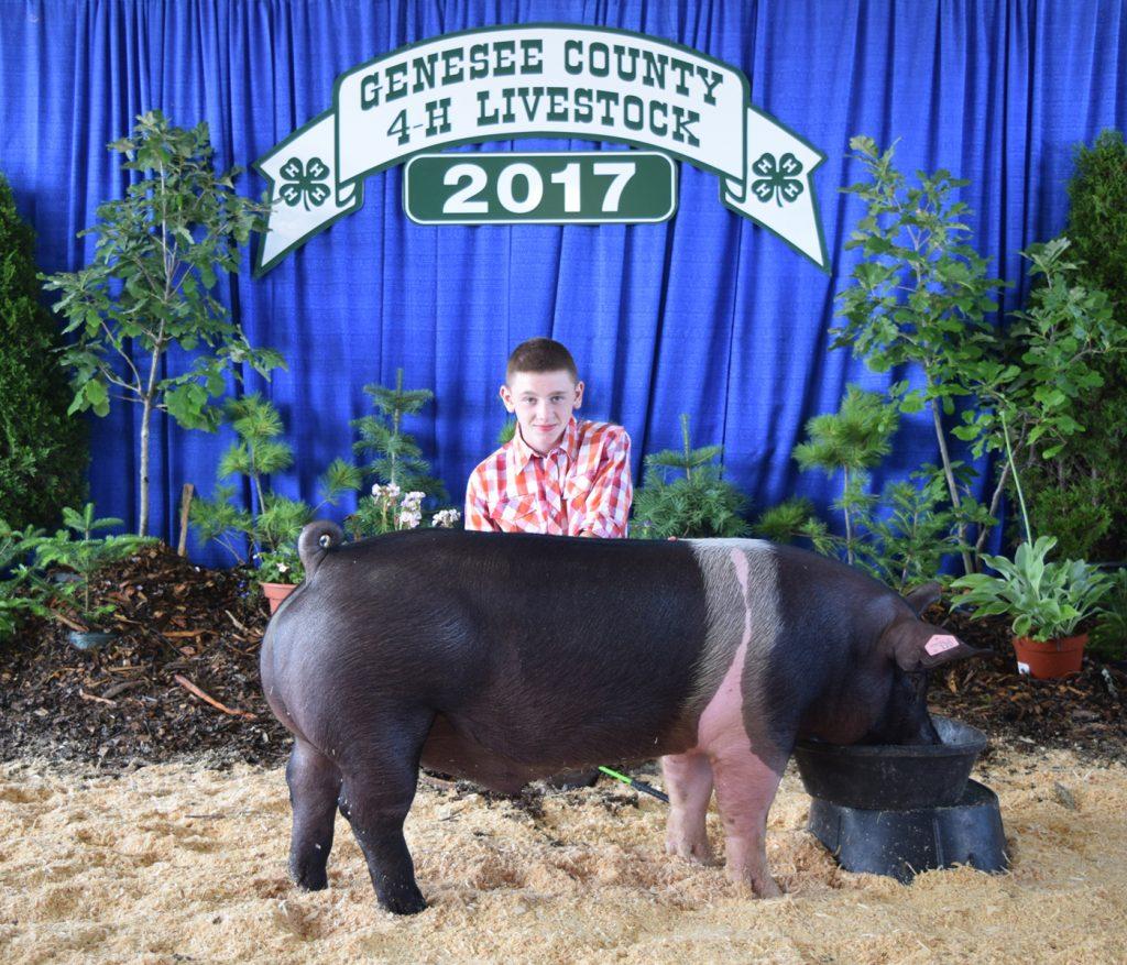 Hudson Weber with his Champion Market Hog.