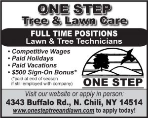 One Step Tree 2x2 Employment 2018-FT