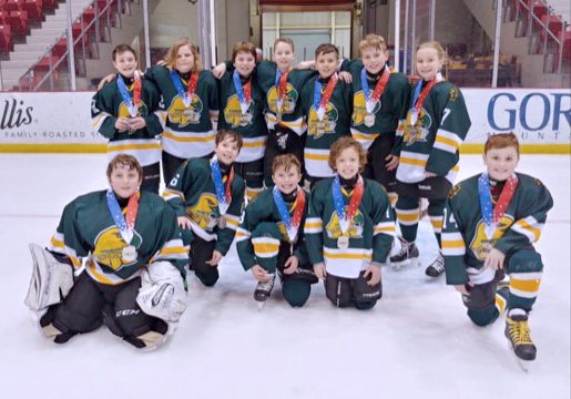 Squirt Hockey