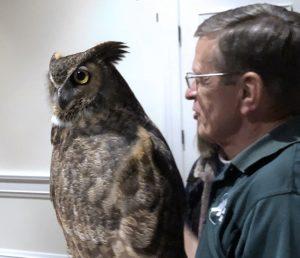 Wild Wings owl presentation.