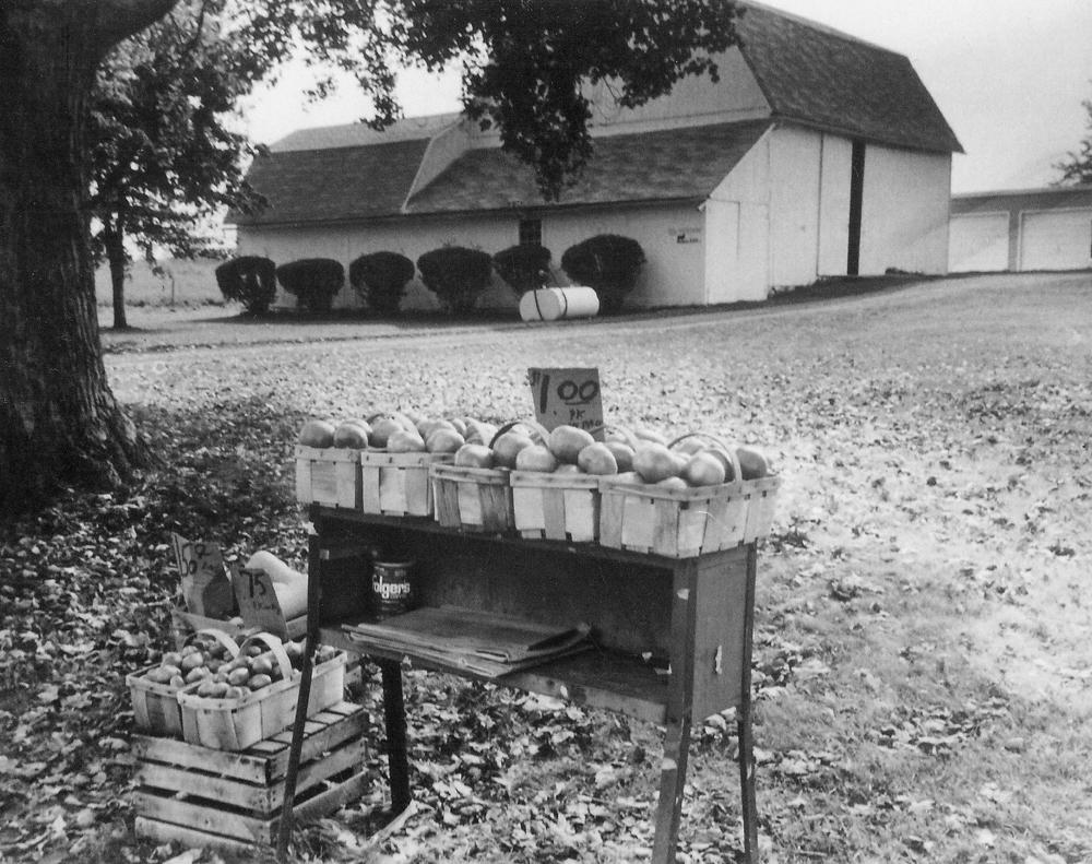 The Wittman Farm in Ogden.