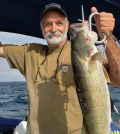 John Tufano, of Greece, displays a nice Lake Erie walleye. John, a veteran troller of Lake Ontario salmon, has made the switch to Lake Erie walleye with great success employing many of the same techniques. Provided photo