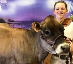Owen Avedisian is a member of the Buttonwood Livestock 4-H Club who raises dairy animals and is part of the 4-H Dairy Project. Photo by Brenda Avedisian.