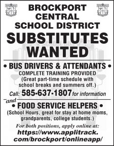 Brockport School Bus Driver 2x4
