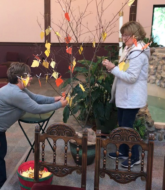 The theme of Spiritual Spa Day 2019 was Compassion: One Wish For The World. Fifty women discussed the dynamics of and need for compassion and created a Tree of Compassion adding leaves for their personal intentions. The tree remains ready to accept more leaves of compassion at St. Elizabeth Ann Seton Church in Hamlin until Thanksgiving.